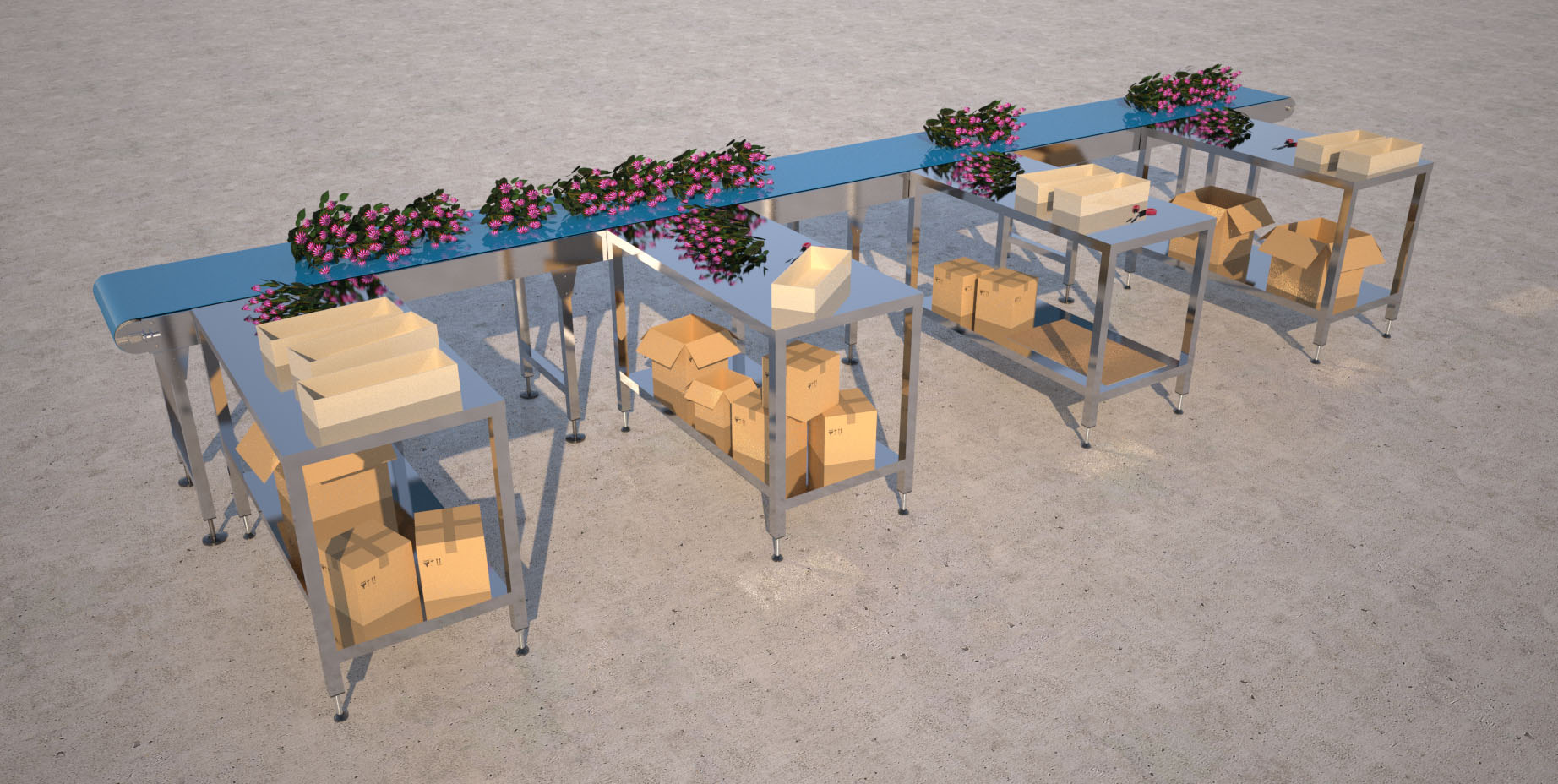 flower-packing-line