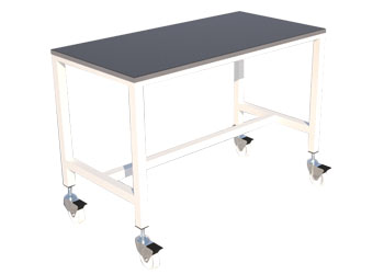 Veterinary Examination Table